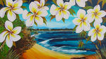 Little Cove Noosa QLD